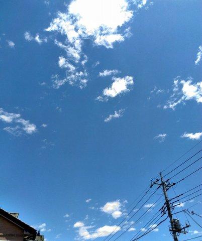 2014-05-17 12.00.08-1.jpg