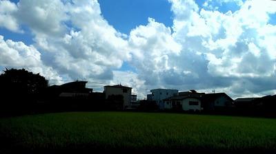 2012-09-01 09.45.16.jpg