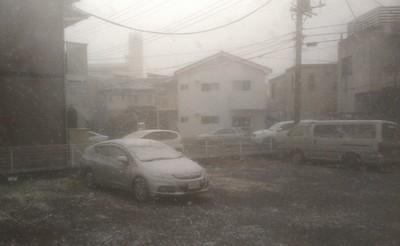 2012-12-01 11.40.16.jpg