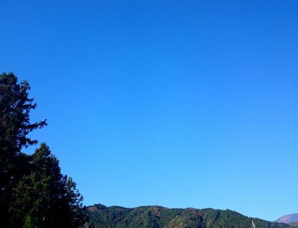2014-10-30 08.26.32.jpg