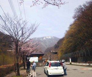 いろは坂入り口から山を望む.jpg