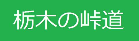 栃木の峠道.png