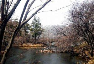 湯ノ湖を望む.jpg