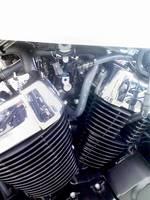 KC3A0566.jpg