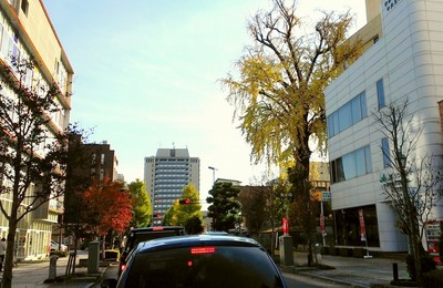 2012-11-25 14.23.37.jpg